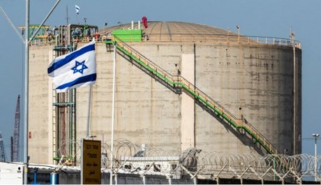 Haifa Chemicals workers protest outside Negev ammonia plant